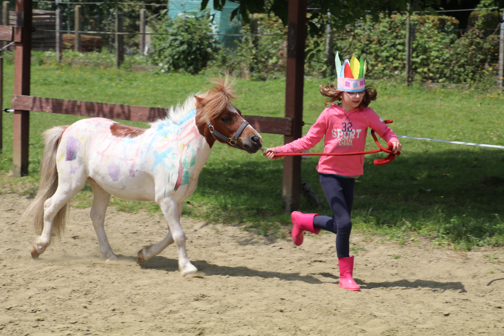 Een speciaal plaatsje in Tienen: Polly's Ranch for special kids.