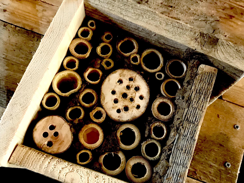 Natuurpunt Tienen knutselt nestkastjes en insectenhotels in Pand10