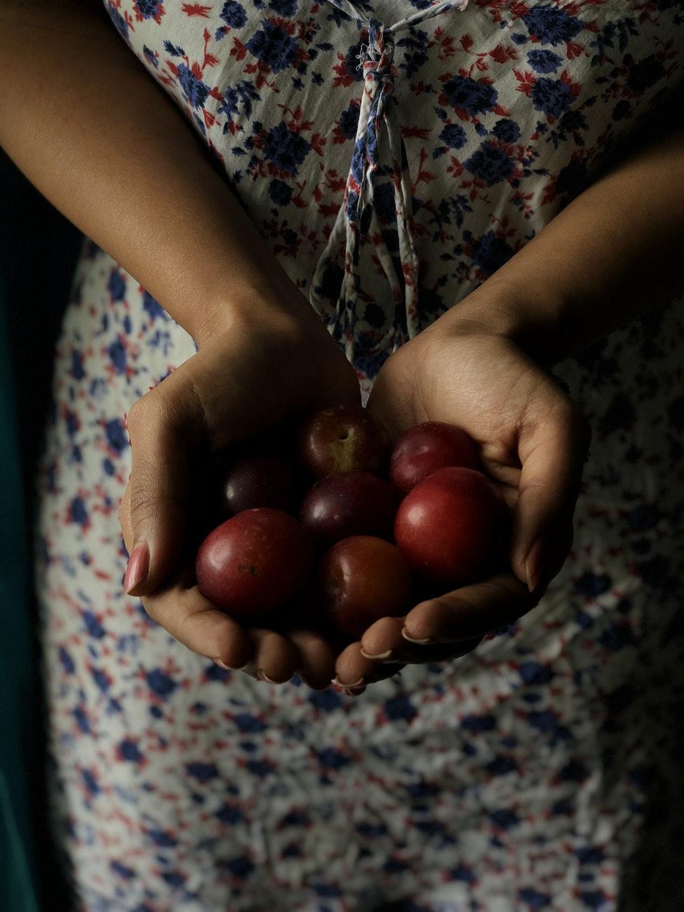 Konijn met pruimen