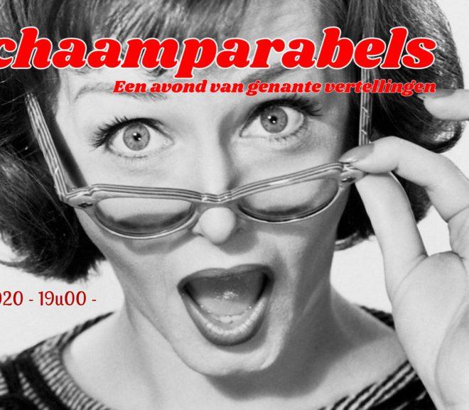 De schaamteparabels: Interactieve literaire en muzikale humor