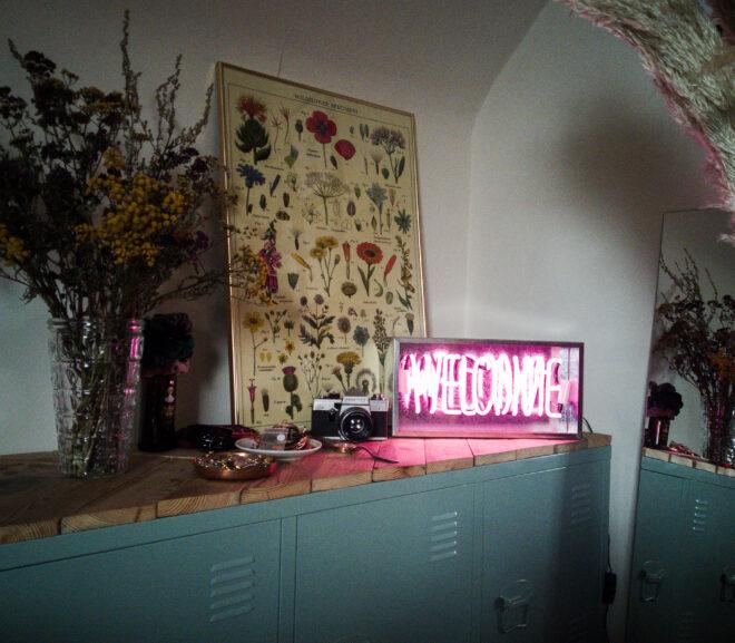 TienenTroef vindt schatten in Kringwinkel Hageland – Tienen