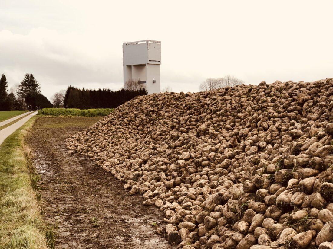 watertoren en suikerbieten